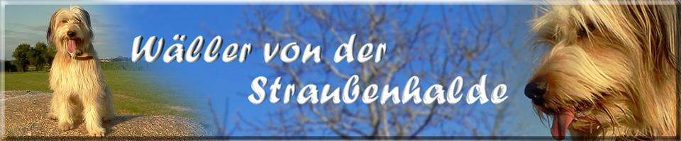 Wäller von der Straubenhalde - A-Luna vom Albtrauf - Wällerfreunde-Deutschland e.V